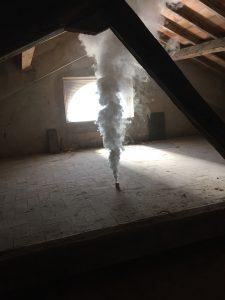 Fumigazione contro i Tarli volanti